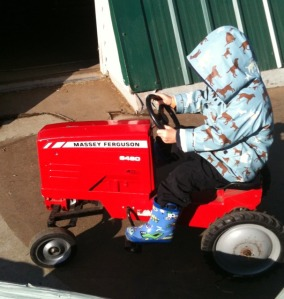 drive a tractor with kids at Taves Farm