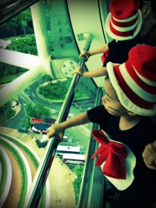 homemade cat in the hat costumes for toddlers
