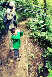 traveling with global family adventures with young kids in costa rica
