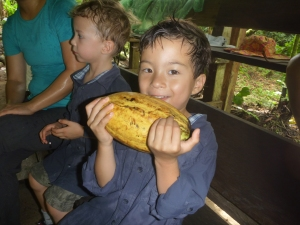 Kid holding a cocoa bean in Costa Rica