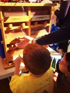 kids love honey sticks at the ballard farmers market on the weekend in seattle