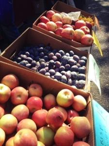 ballard farmers market on a sunny weekend in seattle
