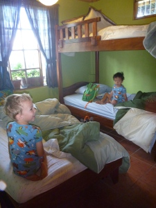 a great place to stay with kids in costa rica at the toucan rescue ranch