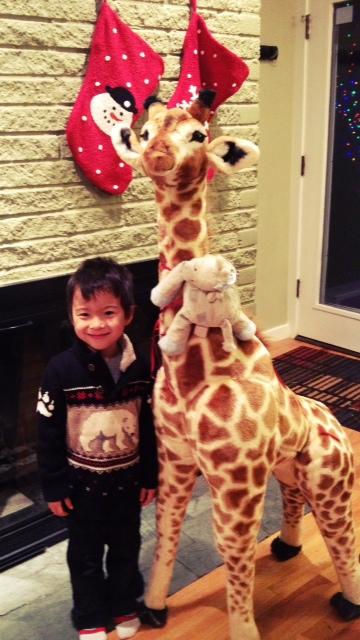 Jemma th giraffe
