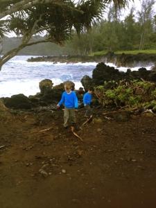 road to hana maui with kids