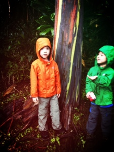 bring raincoats in maui with kids