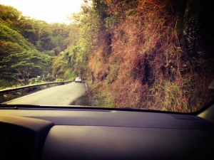 driving the road to hana with kids on maui