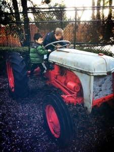 Maplewood Farm with kids review