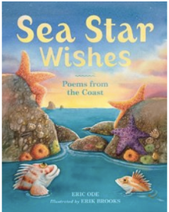 Sea Star wishes, poems from the coast: a great book for kids who love the aquarium